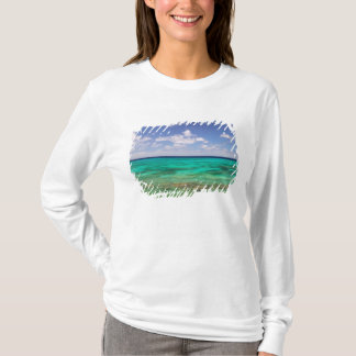 Turcs et la Caïques, île grande de Turc, Cockburn T-shirt