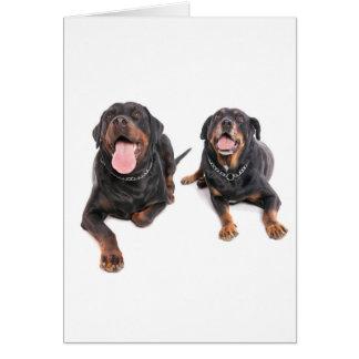 two rottweilers, carte de vœux