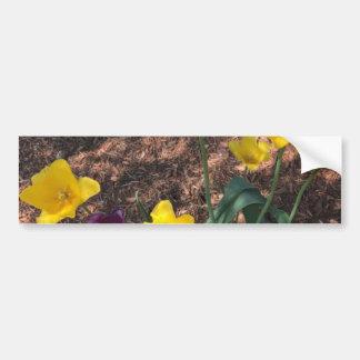 Type fleurs jaune de tulipe de ressort autocollant pour voiture