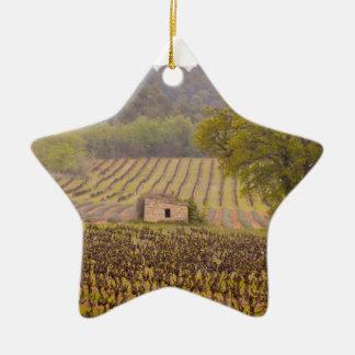 Typically french ornement étoile en céramique