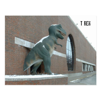 Tyrannosaurus Rex Carte Postale