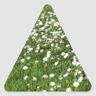 Un air de printemps sticker triangulaire