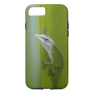 Un anole vert est un lézard arborescent coque iPhone 7