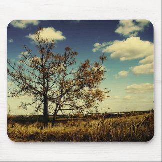 Un arbre isolé dans un domaine sec jaune tapis de souris