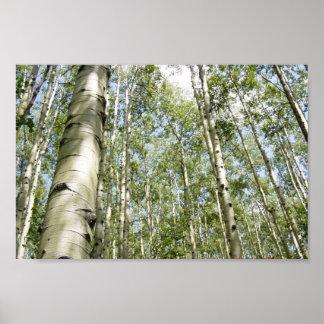 Un beau jour dans l'affiche de forêt poster