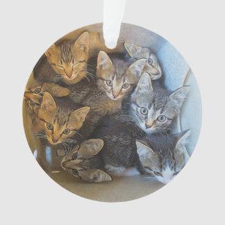 Un bon nombre de chatons