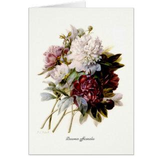 Un bouquet des pivoines carte de vœux