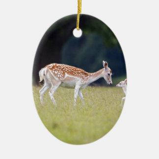 Un cerf commun affriché (daine) avec le faon ornement ovale en céramique