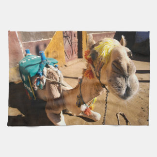 Un chameau amical attend son prochain cavalier, le linges de cuisine