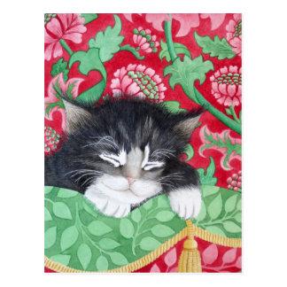 Un chat confortable ! cartes postales