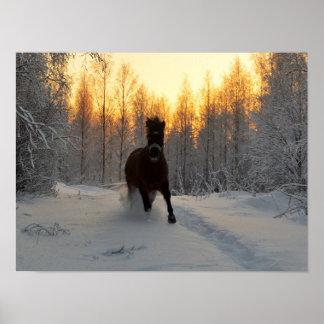 Un cheval courant à l'hiver en Finlande Poster