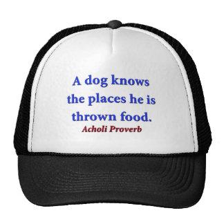 Un chien connaît les endroits - proverbe d'Acholi Casquette