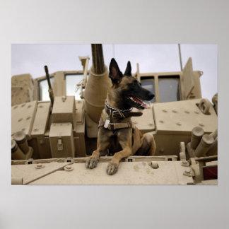 Un chien d'utilité militaire se repose sur un M2A3 Posters