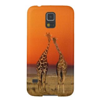 Un couple de girafe entre dans le coucher du coques pour galaxy s5