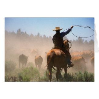 Un cowboy travaillant le troupeau sur bétail carte de vœux