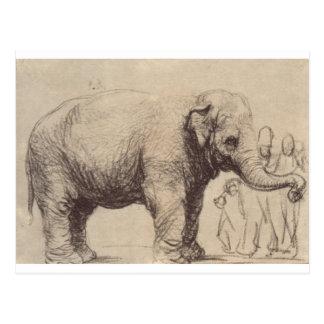 Un éléphant par Rembrandt Carte Postale