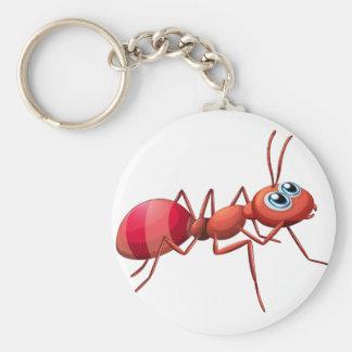 Un grand rampement de fourmi porte-clés