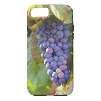 Un groupe de raisins de pinot noir dans un coque iPhone 7