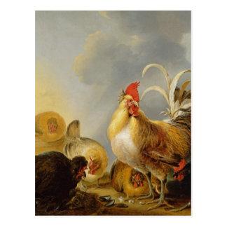 Un groupe de volaille de basse cour, 1643 carte postale