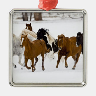 Un hiver pittoresque des chevaux courants sur ornement carré argenté