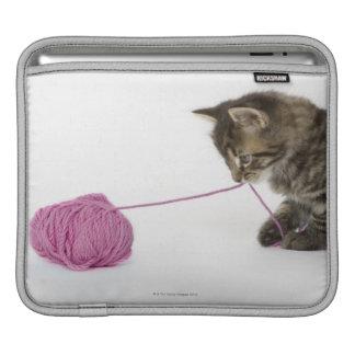 Un jeune jeu tigré de chaton poches iPad