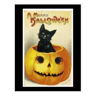 Un joyeux chaton de Haloween Carte Postale