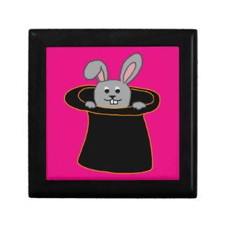 Un lapin dans le casquette boîte à souvenirs