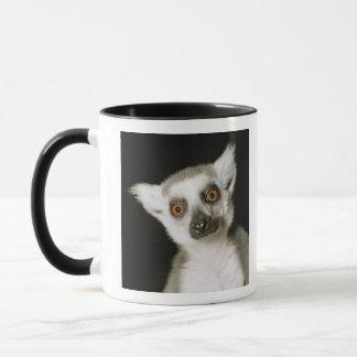 Un lemur. tasses