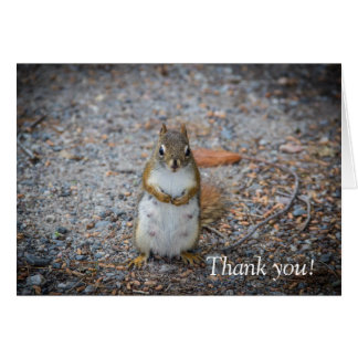 Un Merci debout drôle d'écureuil Carte De Vœux