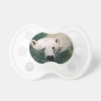 Un ours blanc refroidissant juste sucettes pour bébé