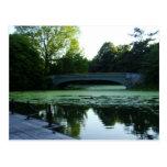 Un pont au-dessus du lac en parc de perspective carte postale