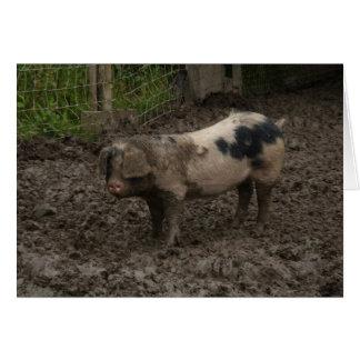 Un porc en fumier carte de vœux