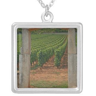 Un portique en pierre au vignoble collier