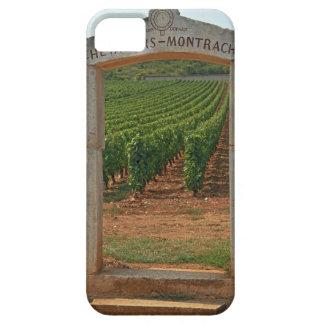 Un portique en pierre au vignoble iPhone 5 case