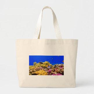 Un récif coralien en Mer Rouge près de l'Egypte Grand Sac