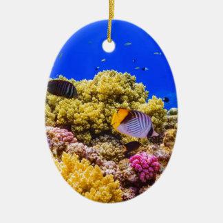 Un récif coralien en Mer Rouge près de l'Egypte Ornement Ovale En Céramique