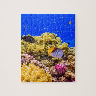 Un récif coralien en Mer Rouge près de l'Egypte Puzzle