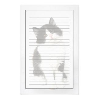 Un regard se reposant de jeune chaton dans papier à lettre