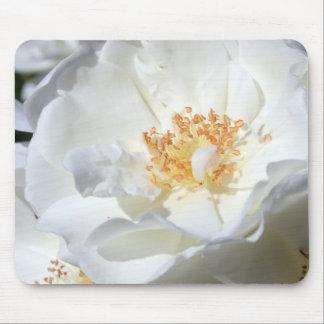 Un rose blanc sauvage tapis de souris