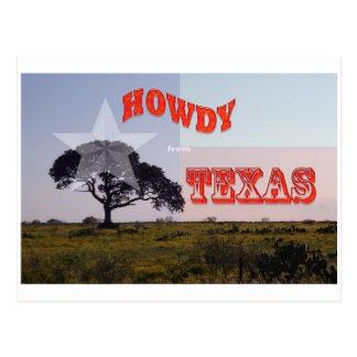 Un Texas allo ! Carte Postale