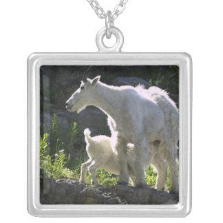 Une bonne d'enfants de chèvre de montagne soigne pendentif carré
