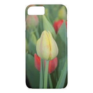 Une caisse de photo de tulipe pour iPhone. Coque iPhone 7