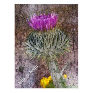 Une carte postale montrant la fleur nationale de