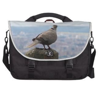 Une colombe colletée curieuse sur le toit du monde sacs pour ordinateurs portables