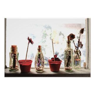 une fenêtre et fleurs - copie de photo