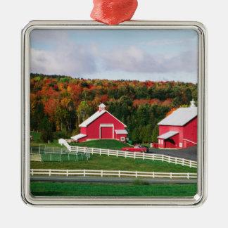 Une ferme au Vermont près de Peacham. LIBÉRATION Ornement Carré Argenté