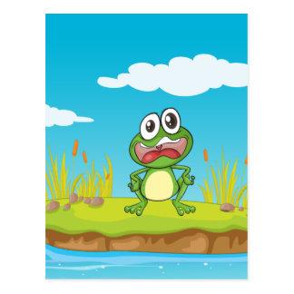 une grenouille et une eau carte postale
