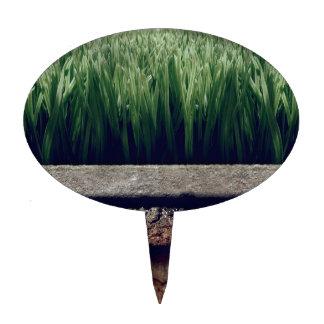 Une herbe plus verte de jardin abstrait l'autre cô étiquette à gâteau