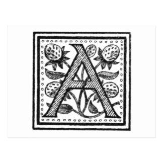 Une initiale d'un moine de fifre carte postale