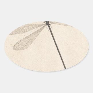 Une libellule, par Nicolaas Struyk, tôt 18ème C. Sticker Ovale